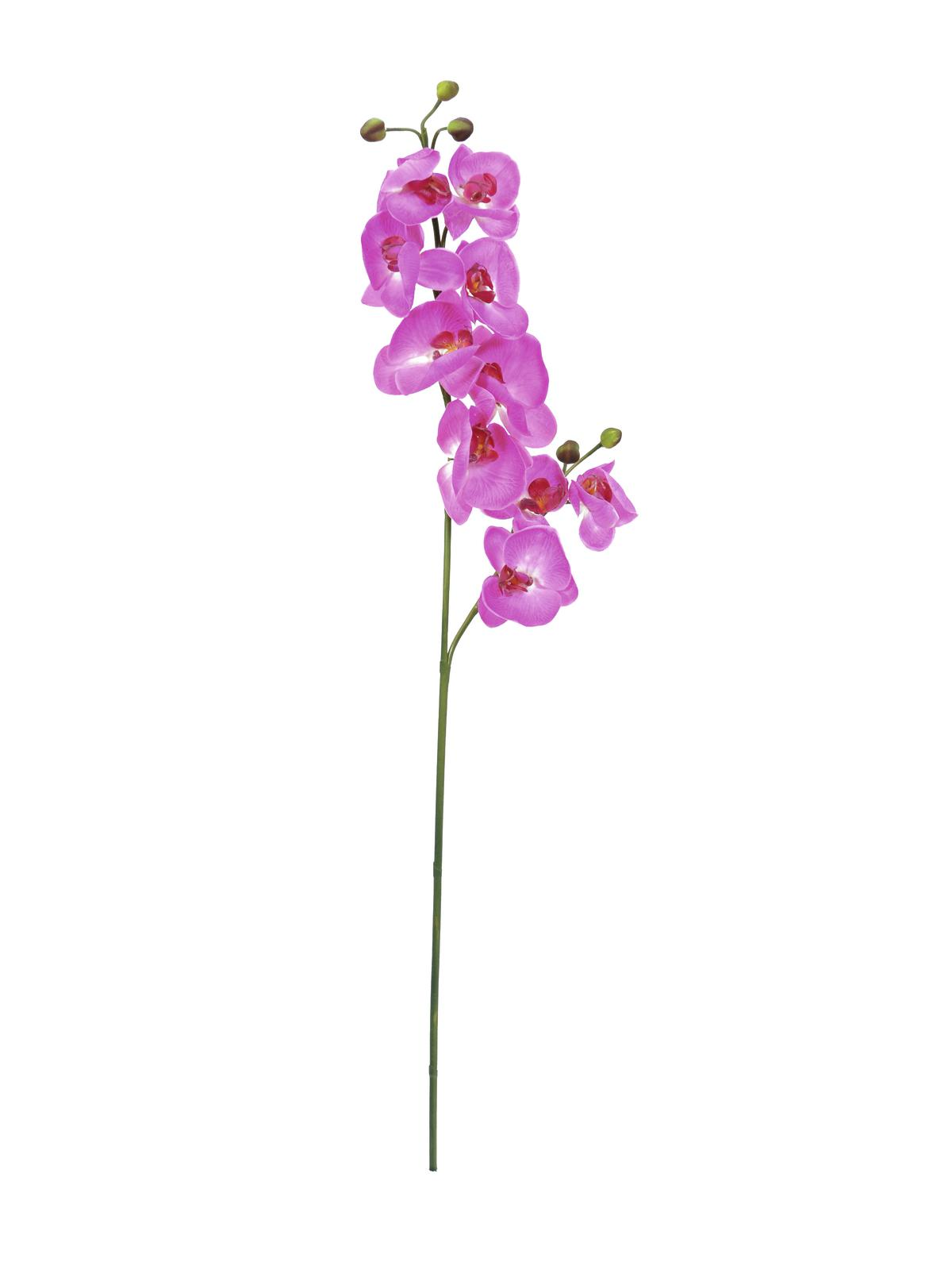 Image of   Kunstig Orchidspray, purple, 100cm