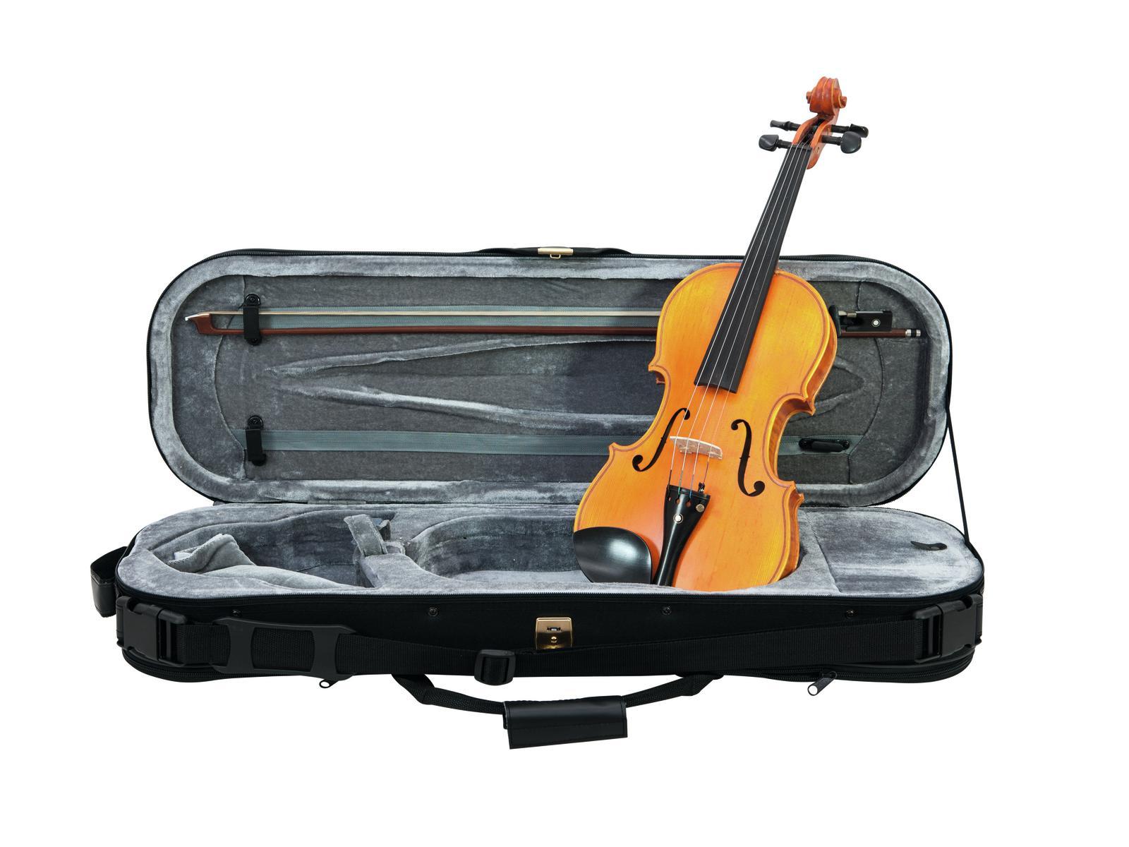 DiMavery Violin Semi-pro 4/4