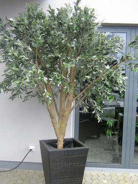 Kunstige oliventræer