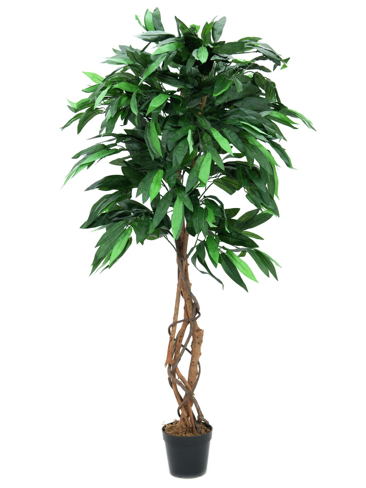 Image of   Kunstig Mango Jungle Træ, 150cm