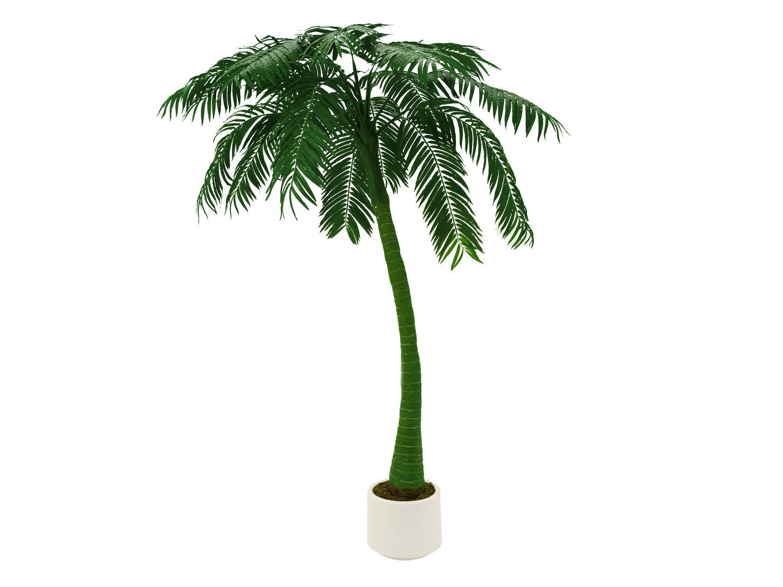 Kunstig Palm, 1-trunk, 300cm - Grøn
