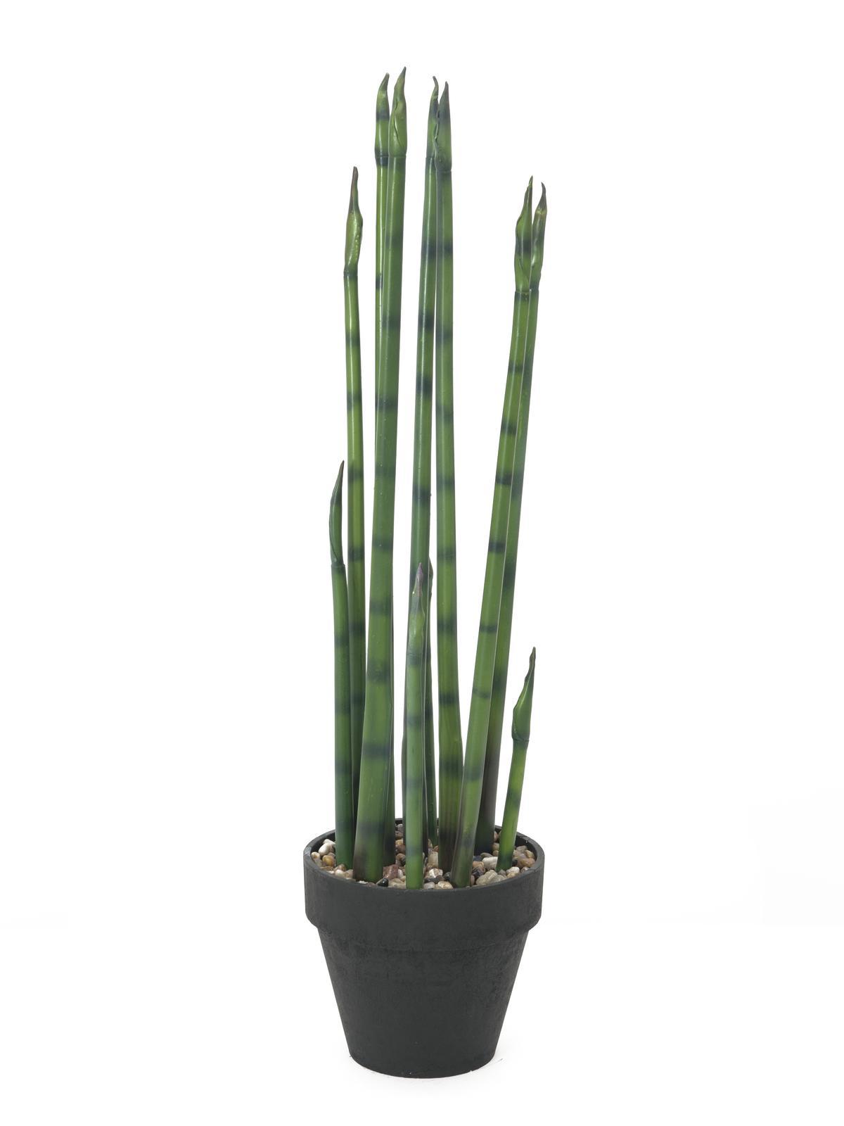 Image of   Kunstig Aloe Gigante, Grøn, 80cm