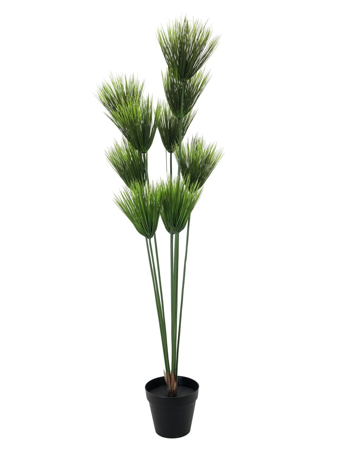 Image of   Kunstig Payrus plante, 150cm