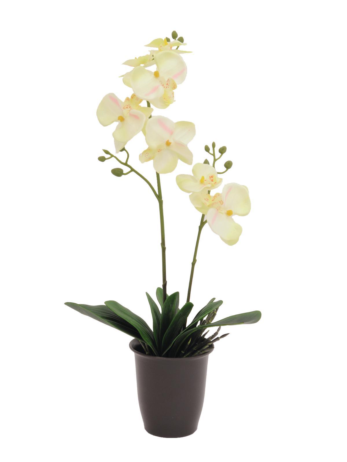 Kunstig Orchid, cream, 57cm