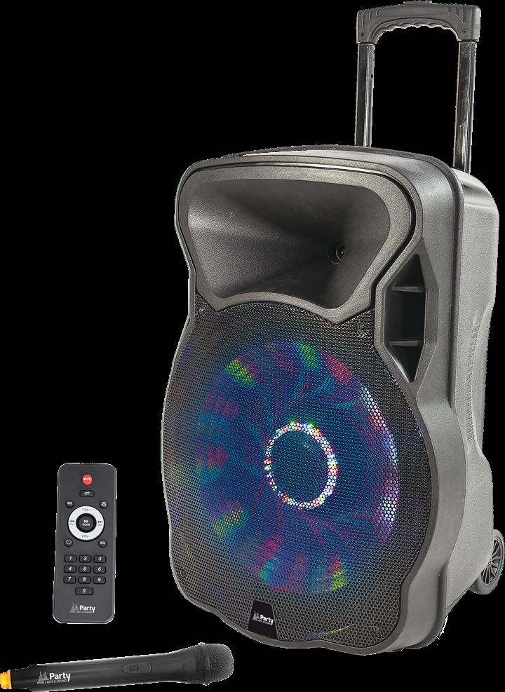 """Transportabel 15"""" Højttaler 800 Watt med USB, Bluetooth og mikrofon"""