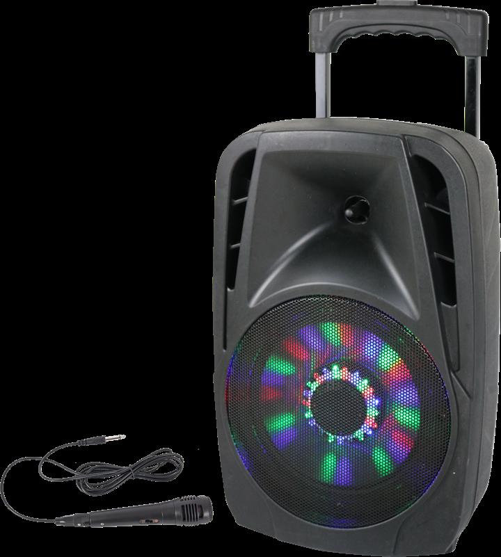 """Image of   Transportabel Højttaler - 8"""" 300w med USB, Bluetooth, FM og Mikrofon"""