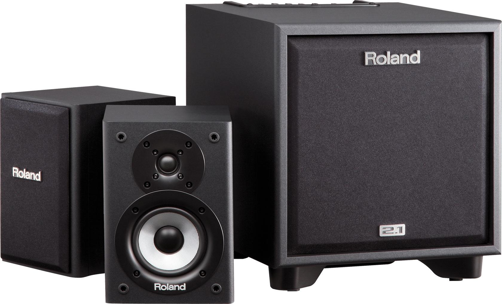 Image of   Roland CM-110 Cube Monitor