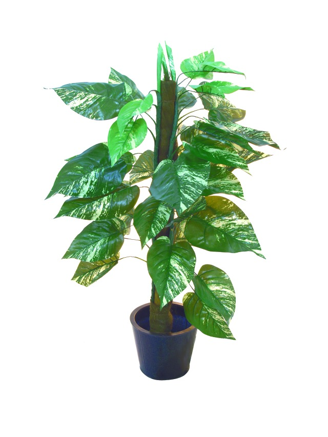 Image of   Kunstig Pothos on Pole, 150cm