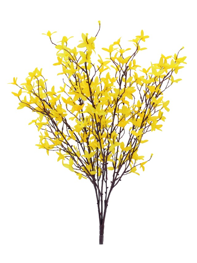 Image of   Kunstig Forsythiabush, 60cm