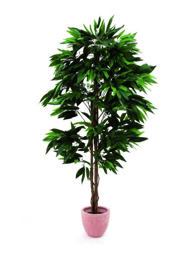 Image of   Kunstig Jungle tree Mango, 180cm