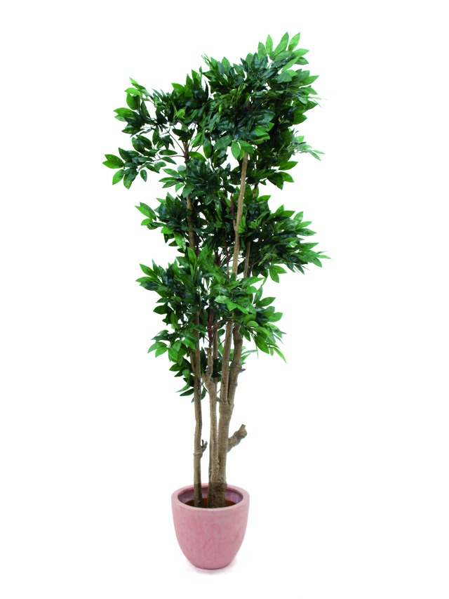 Image of   Kunstig Mediterranean Forest-tree, 180cm
