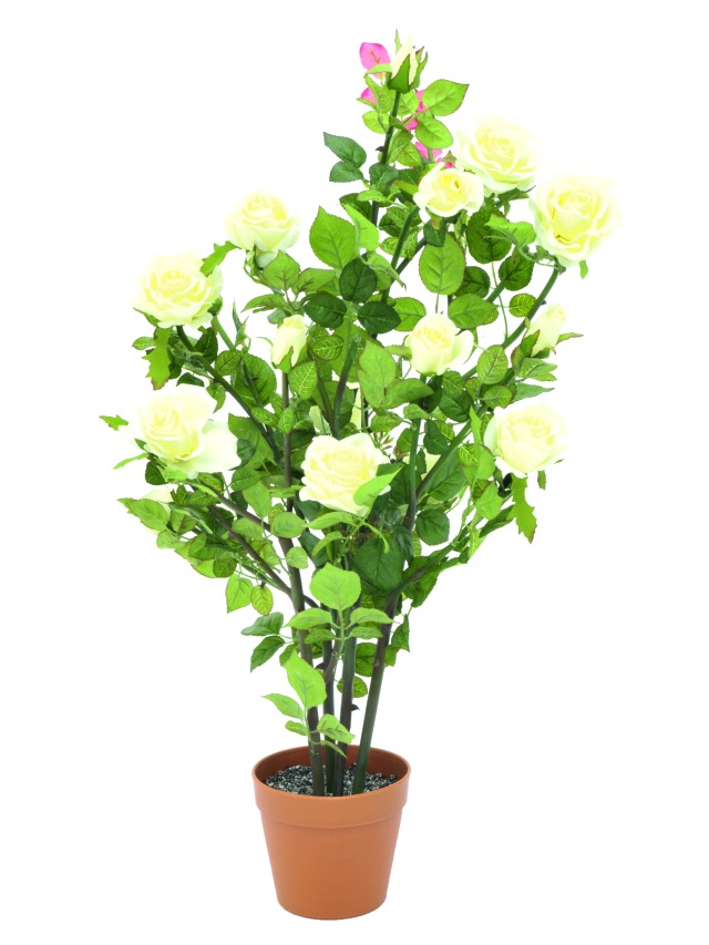 Image of   Kunstig Rosebush, cream, 86cm