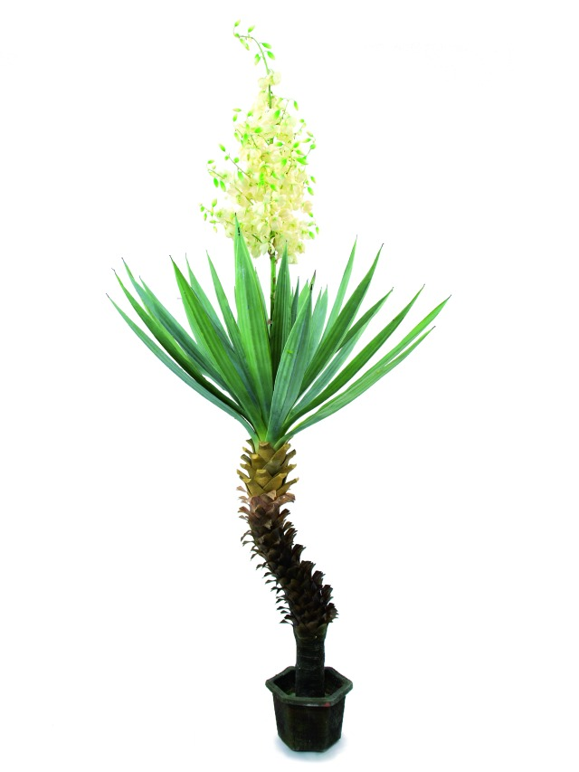 Kunstig Yucca palm with blossoms, 222cm