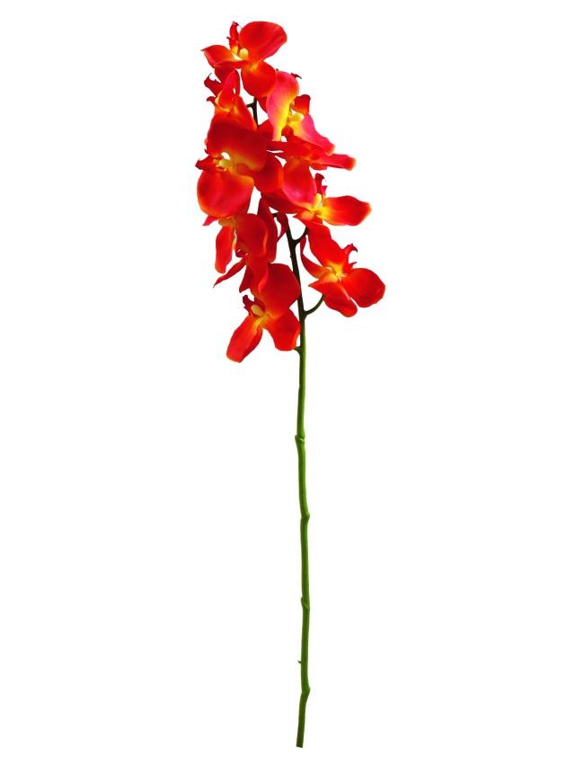Image of   Kunstig Orchidspray, orange, 70cm