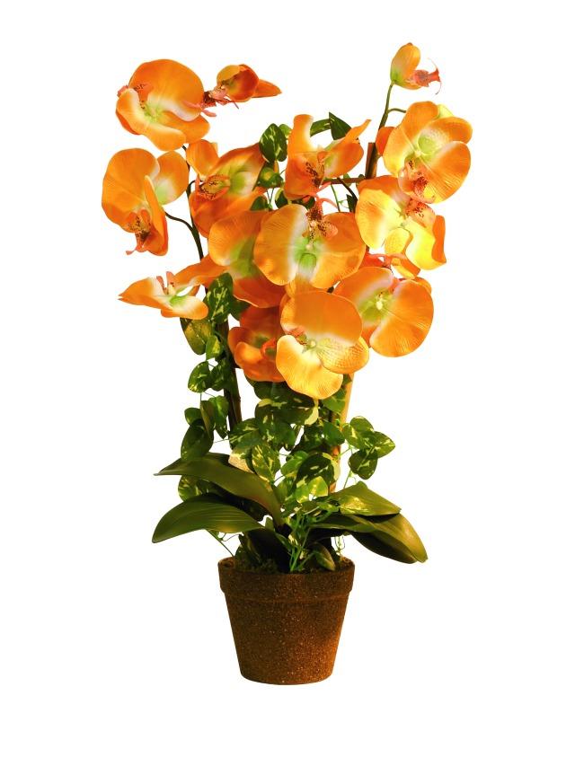 Image of   Kunstig Orchid, orange, 57cm