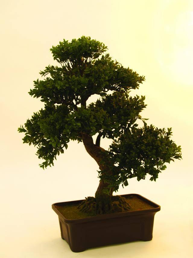 Kunstig bonsai