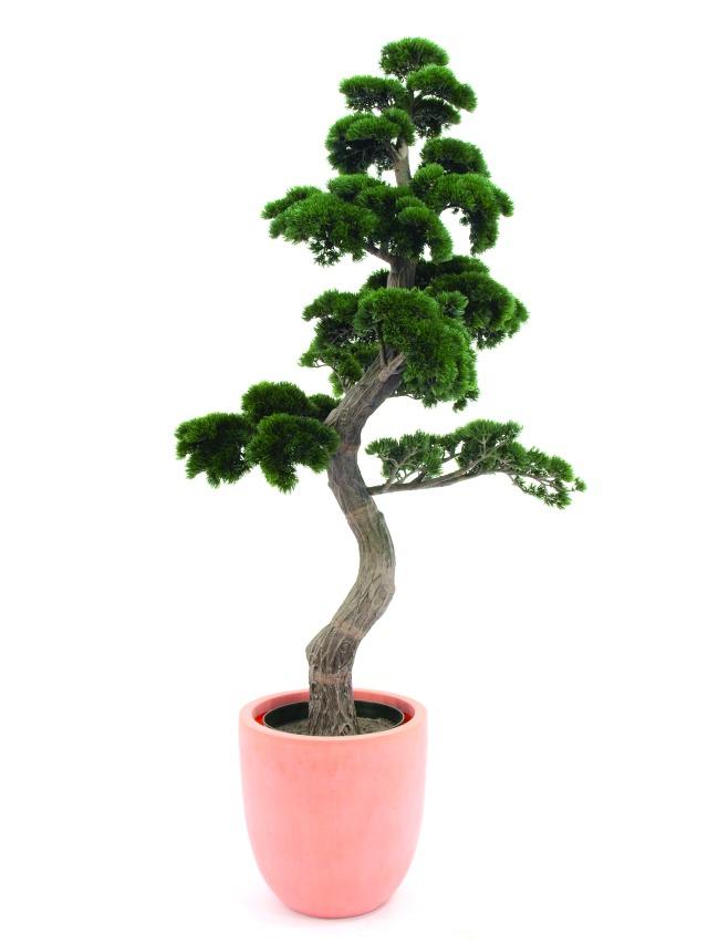 Kunstig Pine Bonsai, 180cm