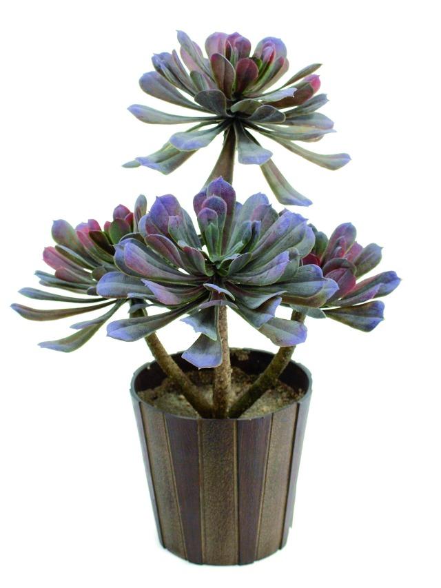 Image of   Kunstig Aeonium sukkulent, olivengrøn, 30 cm