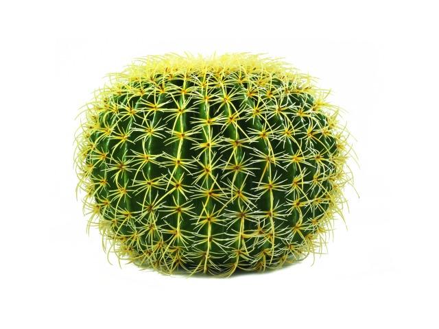 Kunstig kaktus