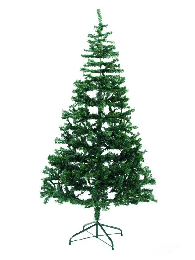 Fir tree, 390cm